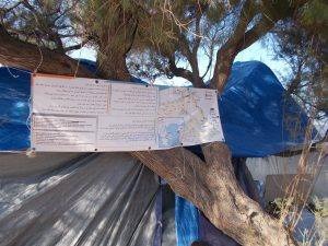 refugee crisis support by Translators without Borders, founded by Lexcelera